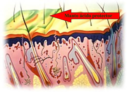 Manto ácido protector de la piel